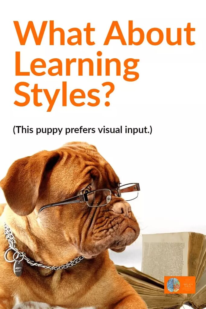 Cognitive Research Does Not Support Learning Styles