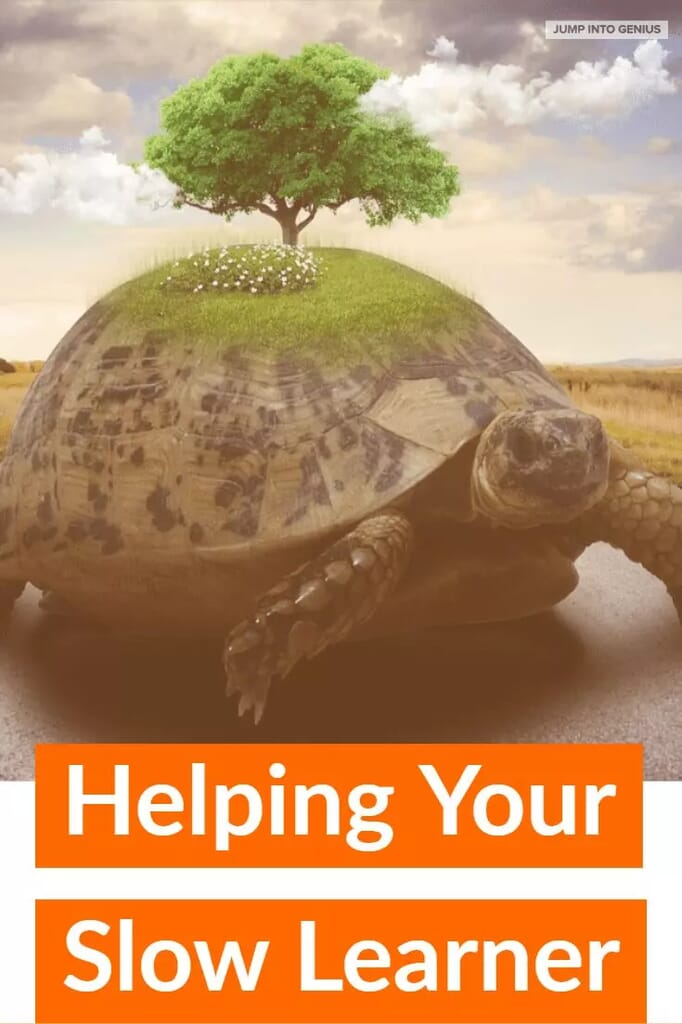 Helping Your Slow Learner