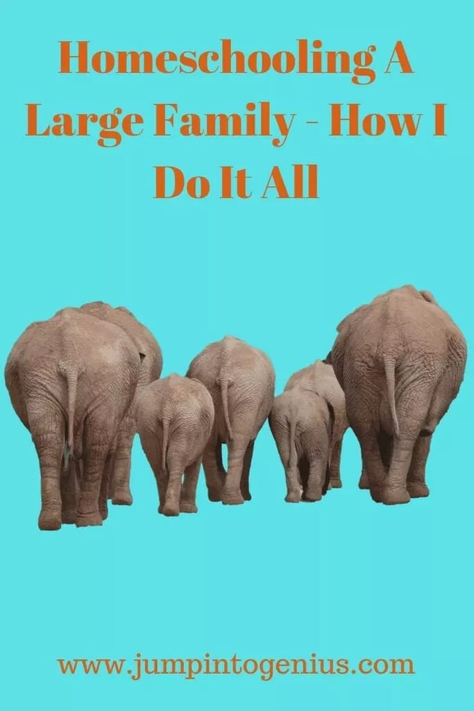 Homeschooling a Large Family - How Do I Do it All?