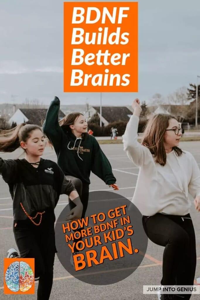 BDNF Builds Better Brains