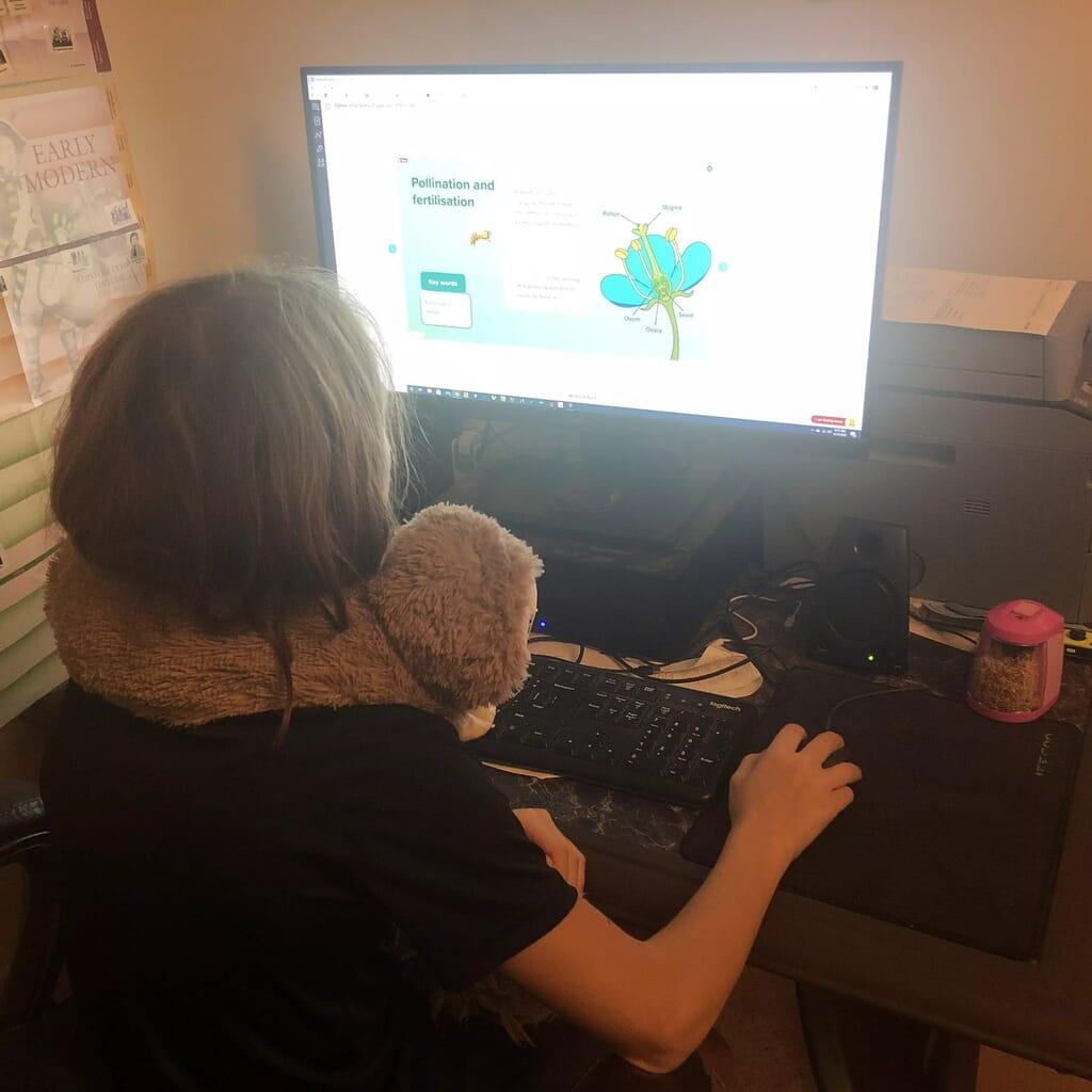 Virtua 21st-Century Learning