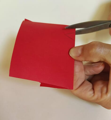 Cut a small diamond out of red construction paper and fold at the middle to make a beak.