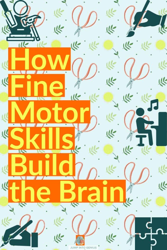 How Fine Motor Skills Build the Brain