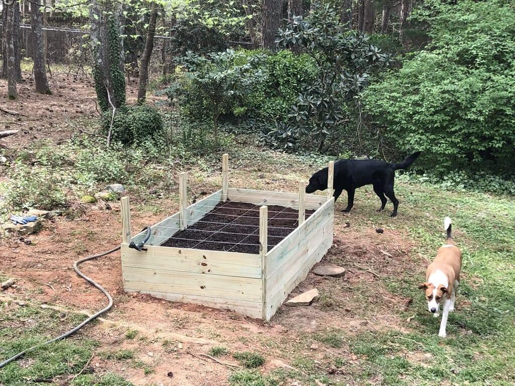 A 4 by 8 raised box garden.