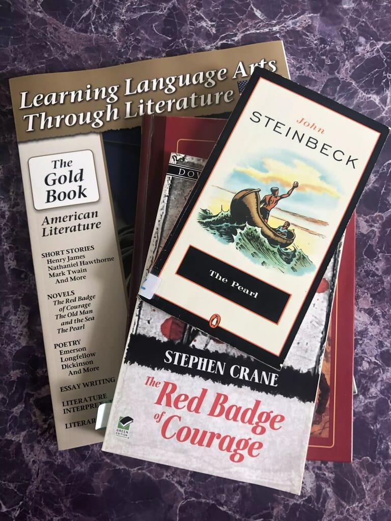 Homeschool High School Literature Curriculum